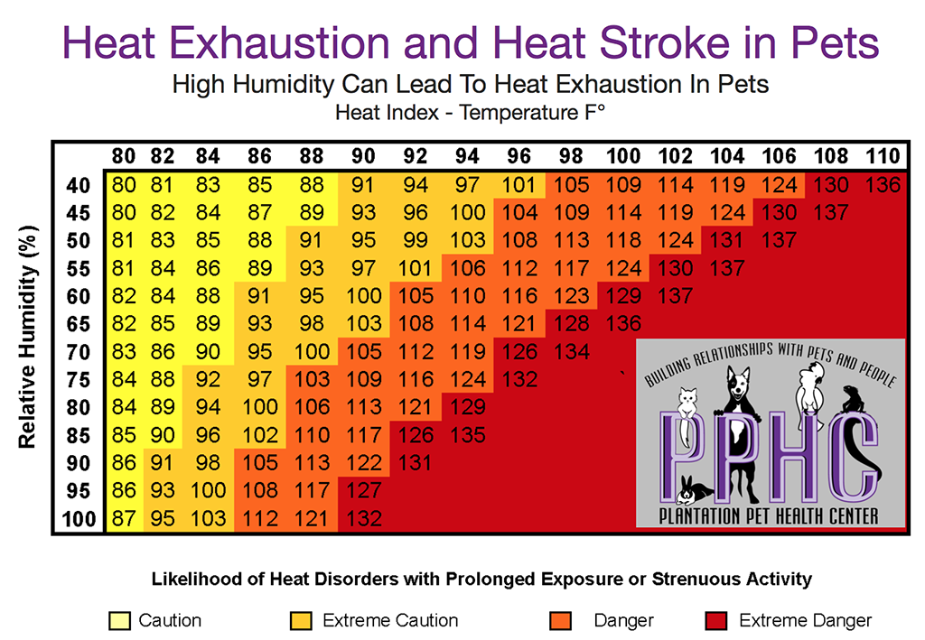Heat Exhaustion and Heat Stroke in Pets heat index