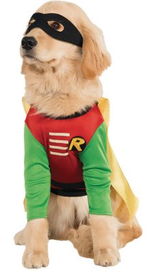 Halloween Safety For Pets Dog Costume:
