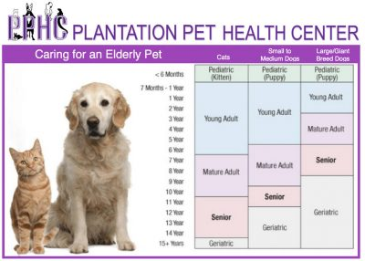 Veterinary Services provided by Plantation Pet Health Center (PPHC) include medical, surgical and dental care