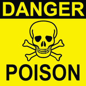Pet Poisoning – Most Common Pet-Ingested Toxins