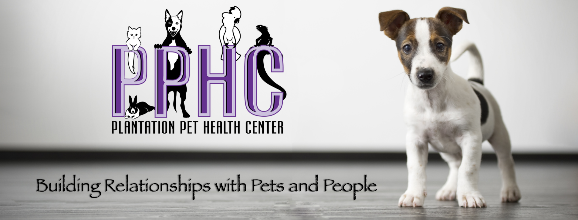 Plantation Pet Health Center (PPHC) Frisco Doc Martin
