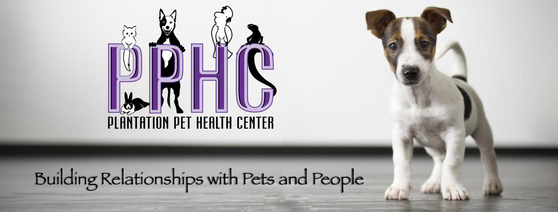 Plantation Pet Health Center (PPHC) Frisco Doc Martin
