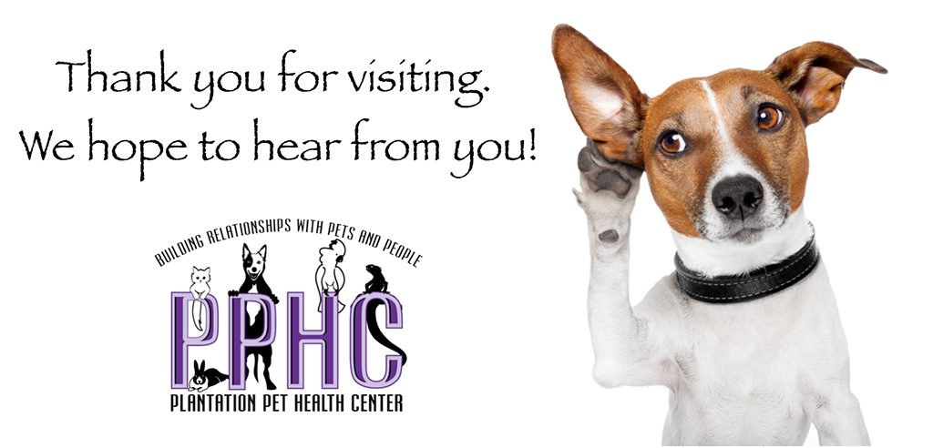 Welcome to our new website on veterinary care