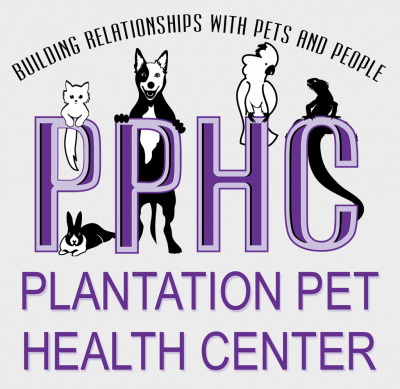 "Doc Martin's Vet Blog George ""Doc"" Martin, Jr., DVM veterinarian from the Frisco Plantation Pet Health Center (PPHC)"