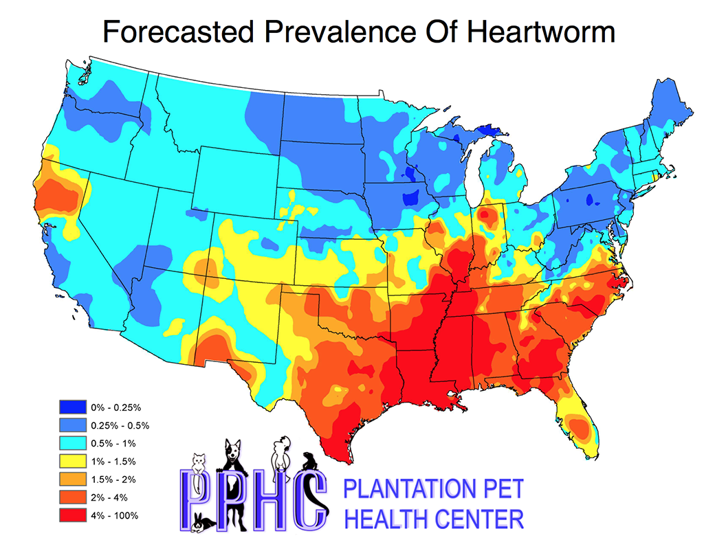 Heartworm Preventative